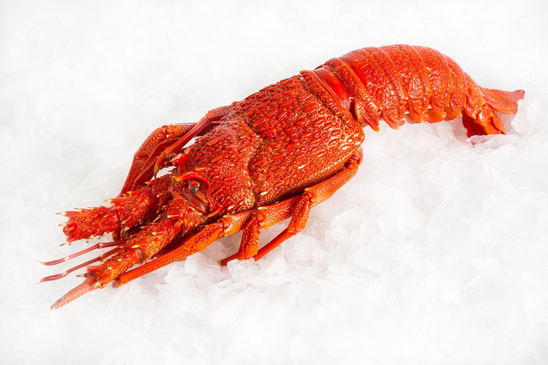 crayfish Seafood
